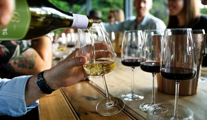 Non vai a vendemmiare? Allora ecco 10 vini ottimi sotto i 10 euro per fare un figurone alla cena radical chic