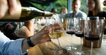 """Al via i festeggiamenti per  le vigne dei """"Colli dei Longobardi"""""""