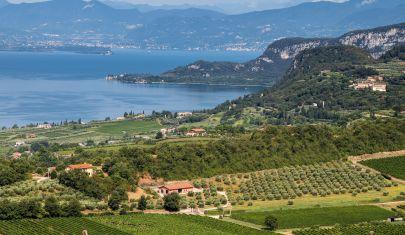 La Festa dell'Uva e del Vino in Cantina sul Lago di Garda
