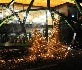 Cantine aperte a Natale 2019: tutti gli eventi regione per regione. Per veri winelovers, ma non solo