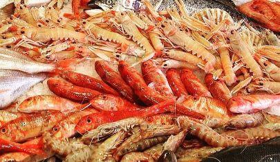 Il pesce crudo è per sempre: 6 locali di Roma che ti portano il mare in tavola