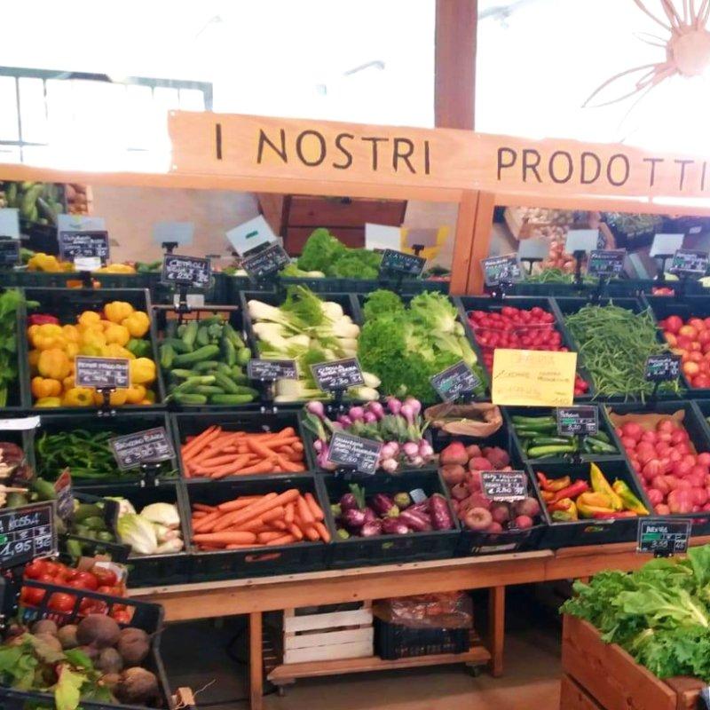 Mangiare vegetariano e vegano a Treviso e provincia: ecco dove