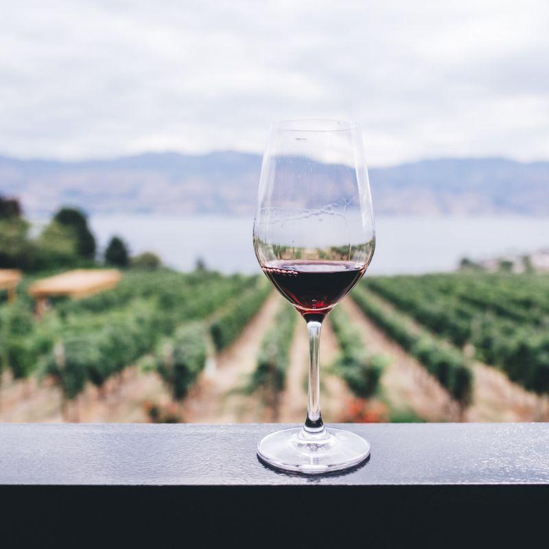 #VINODENTRO: il corso sul vino di ONAV, tutto digitale