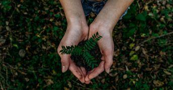 Il Progetto Virtù per un'alimentazione sostenibile