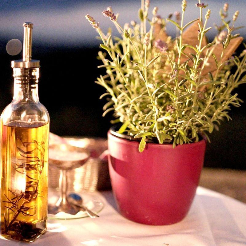 Olio d'oliva, in aumento la produzione rispetto allo scorso anno e buona qualità