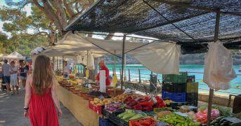 Nasce la rete mondiale dei mercati contadini