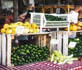 Nasce la Rete mondiale dei mercati contadini per approvvigionare le aree di povertà alimentare