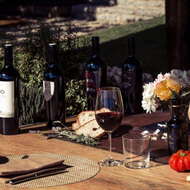 La classifica dei 100 vini migliori d'Italia secondo James Suckling