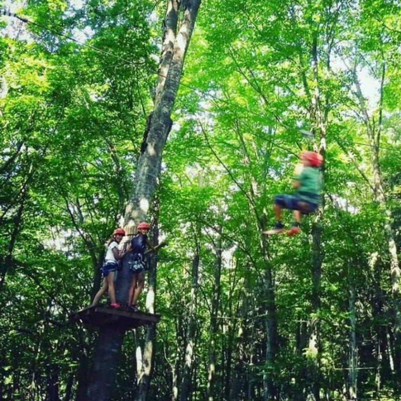 La guida definitiva ai migliori parchi divertimento del Veneto per tutta la famiglia