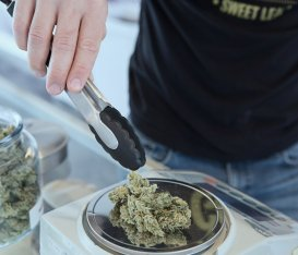 Ti spiego perché la marijuana light si usa per il relax