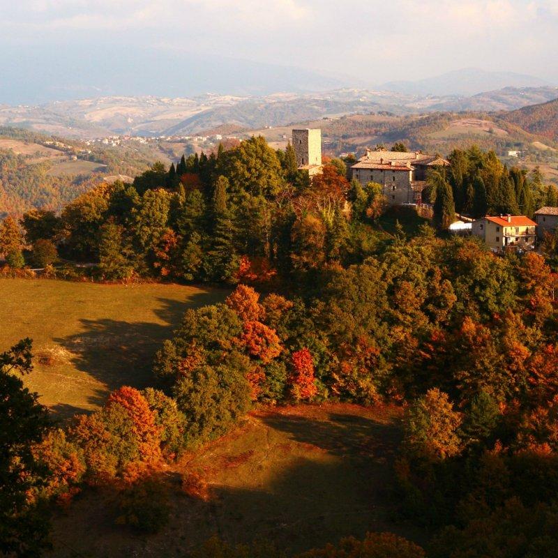 Quando gli alberi diventano ambrati: 10 posti dove ammirare il foliage d'autunno in Italia