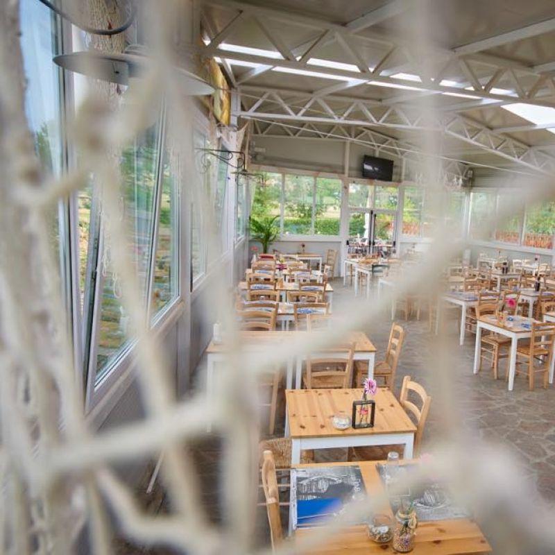 Un tifoso lo è anche a cena: i ristoranti di Firenze dove vedere le partite