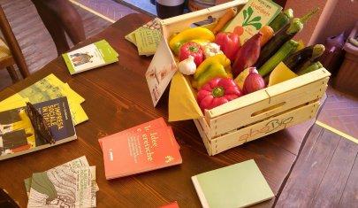 Fare bene al Pianeta mangiando da Dio: dove abbuffarsi a Padova in nome dell'eco-sostenibilità