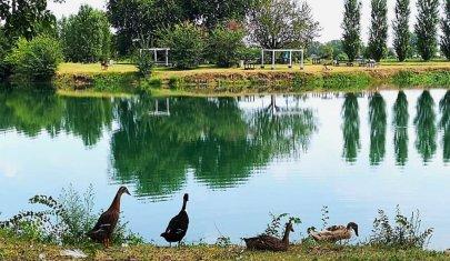 Birdwatching e relax: gita fuori porta al Parco Agricolo Sud Milano