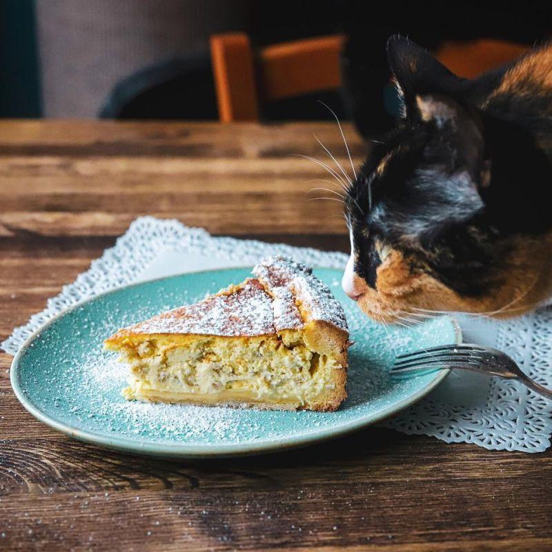 Le piccole gioie della quarantena: un brunch a regola d'arte anche a casa con Crazy Cat Café