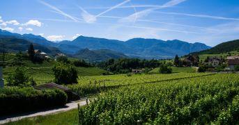 Autochtona Award ha premiato i migliori vini autoctoni d'Italia