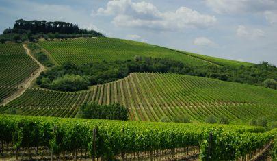 La Top 100 vini di Gentleman 2021: i vini rossi italiani più amati al mondo