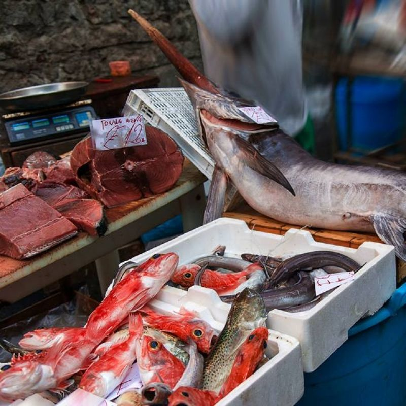 Mangiare il pesce nelle storiche trattorie di Roma: il naufragar m'è dolce in questi luoghi