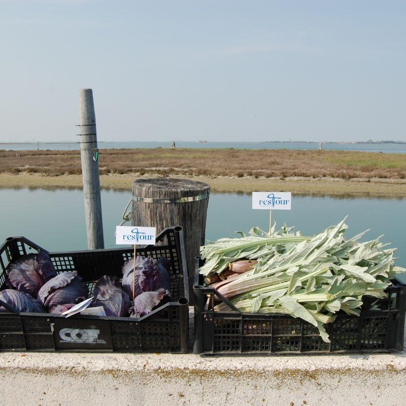 ResTour: un progetto sulla filiera del cibo veneziano