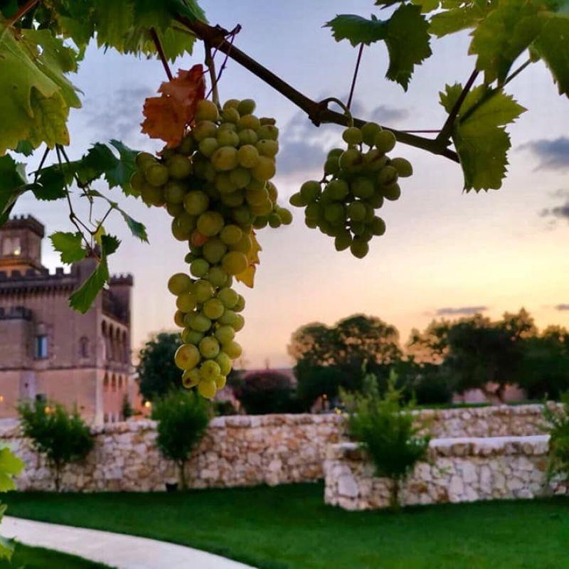 Natura e buona cucina in Salento: cenare all'aperto in 5 posti fighissimi